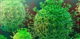 Coranavírus segundo caso